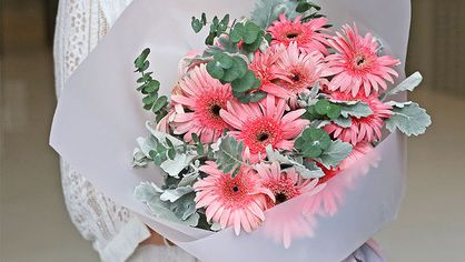 情人节表白可以吗?情人节表白送什么花?表白送花集锦收藏起来!
